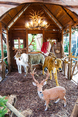 Rudolph's stable