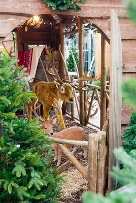 Décor L'écurie de Rudolphe